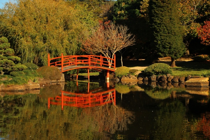 The Japanese gardens in Toowoomba