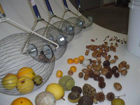 Holt's Nut Wizard nut harvesting tool: nut picker Douglas GA #brilliant