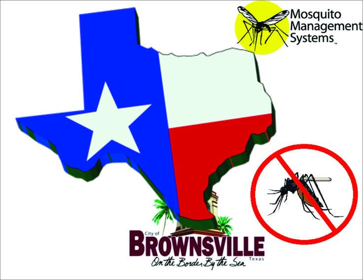 4ebba91eab35dc36877b9ec3464c91a3 travel advisory brownsville