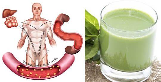 4 rimedi contro colesterolo alto e ipertensione | Rimedio Naturale