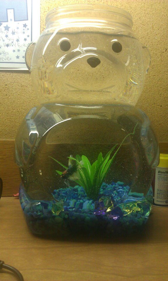 animal cracker container fish bowl