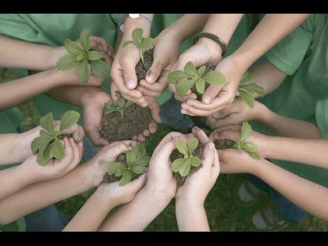 Importancia del Cuidado y Seguimiento del Medio Ambiente - TvAgro por Ju...