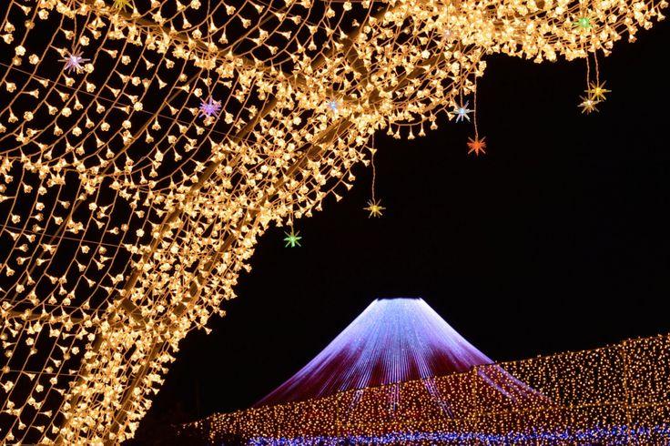 毎年10月下旬頃からパーク内のいたる所にLEDライトが設置され、日本最大級のイルミネーションが誕生する。人気の「花回廊」は約200メートルの光輝くトンネル。小さな花をかたどった白熱電球でつくられており、「冬の華」を表現している。