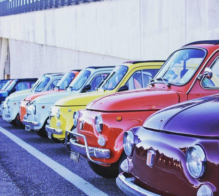 Federico Nardin @fede_nardin #fiat #fiat500 #classic #milanoautoclassica #art #... | Yooying