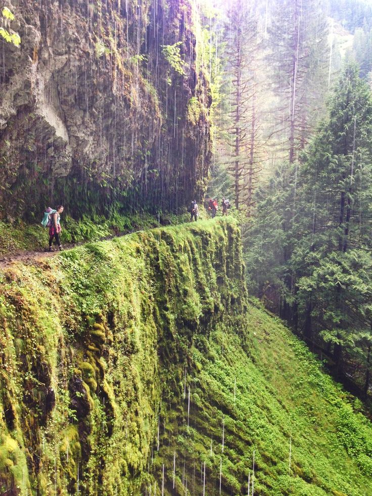 tunnel falls hike, Columbia River Gorge, OR.