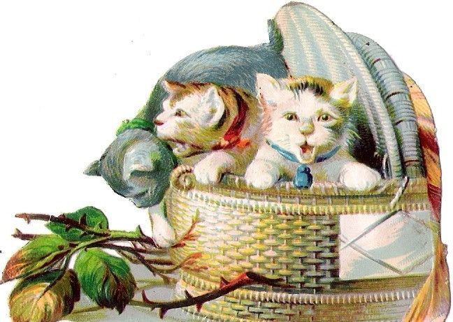 Oblaten Glanzbild scrap die cut chromo Katze cat chat  kitten Korb basket