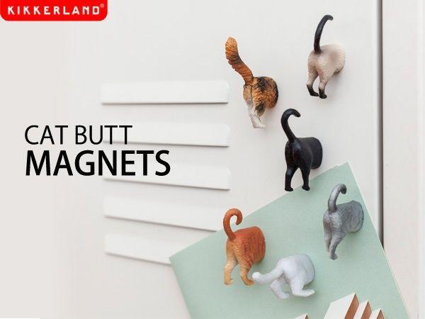 Cat butts magnet @ It's a Present!