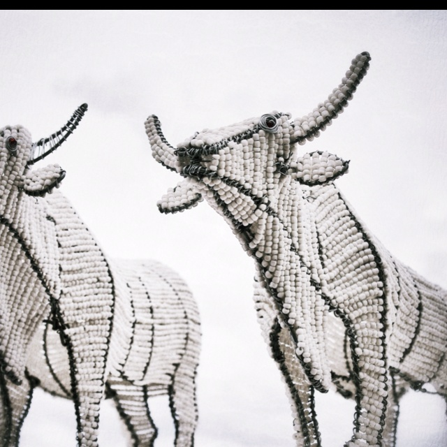 Beaded wire cows that gets sold on lots of streetcorners in Johannesburg