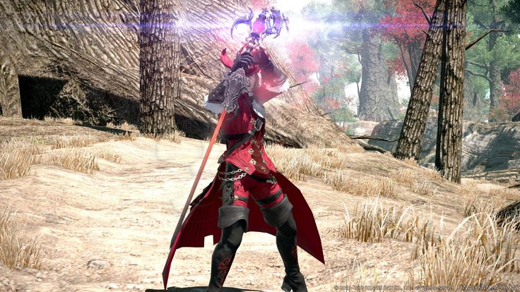 GRA  PS4: FINAL FANTASY XIV: STORMBLOOD