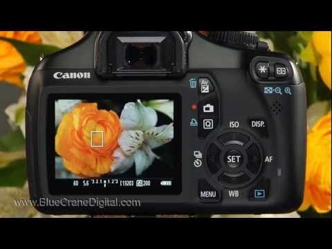 Introduction to the Canon Rebel T3 / 1100D: Basic Controls