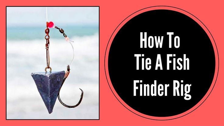how to tie a fish finder rig