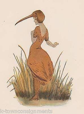 MADAME IBIS & SANDPIPER BIRD CHILDREN VINTAGE GRAPHIC ILLUSTRATION POETRY PRINT