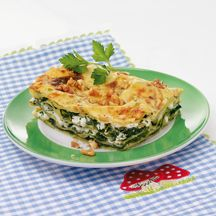 Grüne Lasagne PP 11
