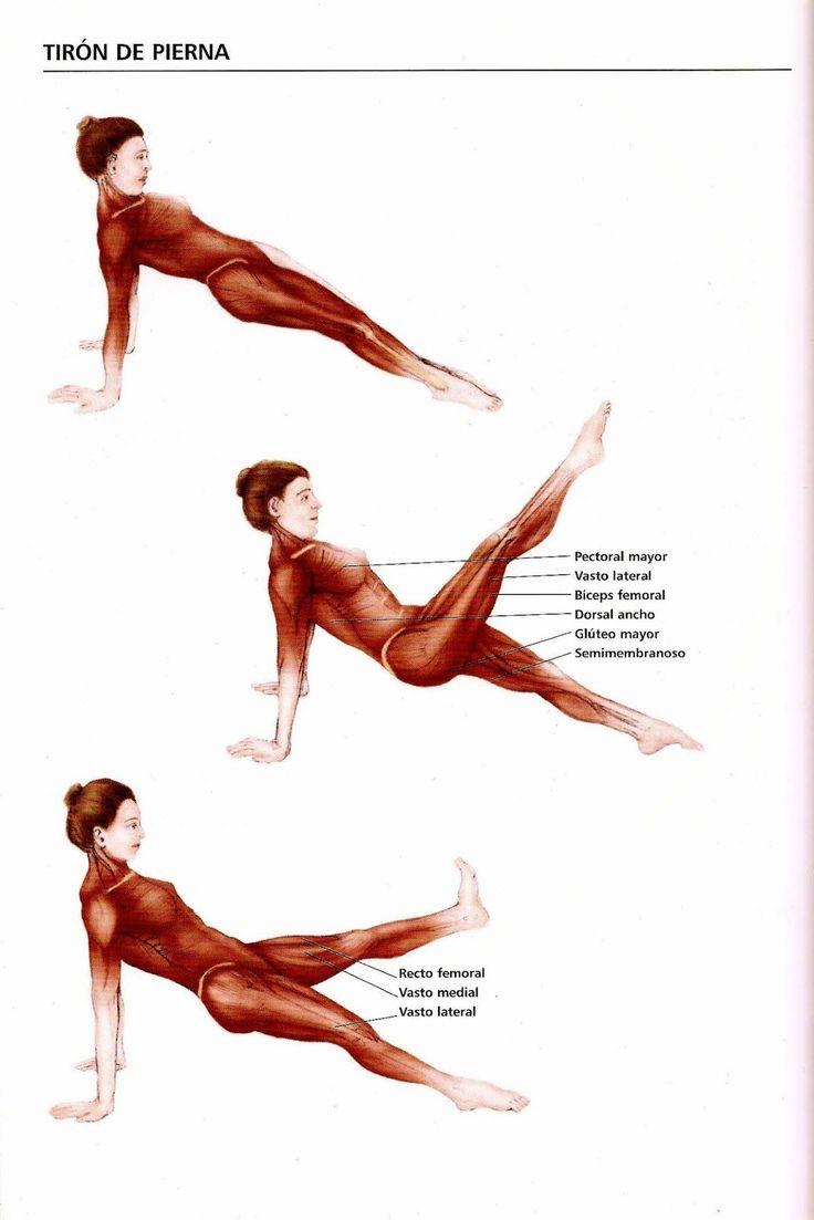Pilates Marisa: Los básicos de Pilates: The leg pull front (Tirón de pierna de frente)