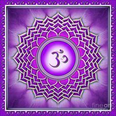 """O sétimo chakra, também chamado de chakra da coroa, está localizado na parte superior da cabeça. Em um recém-nascido, o topo da cabeça, está """"aberto"""" no"""