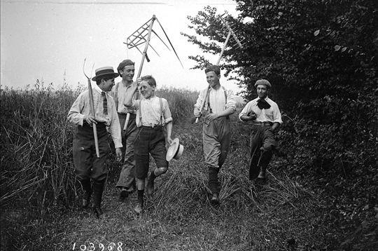 Activité cruciale de la vie paysanne, la moisson mobilise les campagnes pendant la période estivale. Ici, des lycéens faisant la moisson aux environs de Rambouillet (Yvelines) en 1916. © Maurice Branger / Roger-Viollet