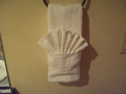 Pic On Towel Origami