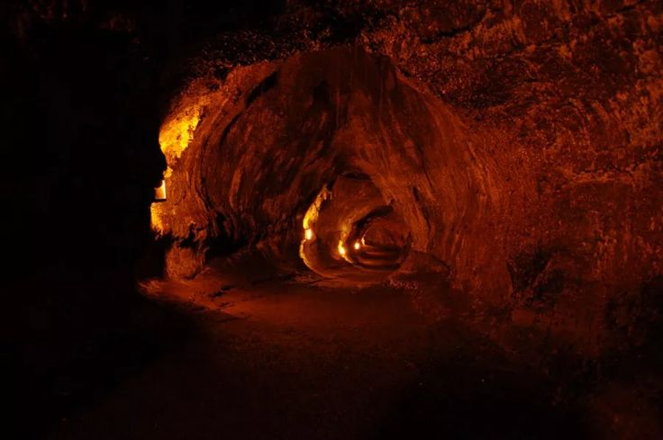 Located in Hawaii Volcanoes National Park, Thurston Lava Tube is one of the main attractions for visitors as they explore the park . Like veins leading…