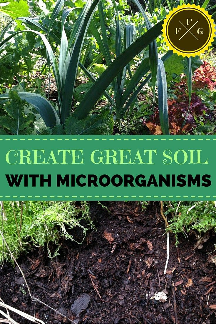 328 best real science 4 kids images on pinterest for Soil 4 youth