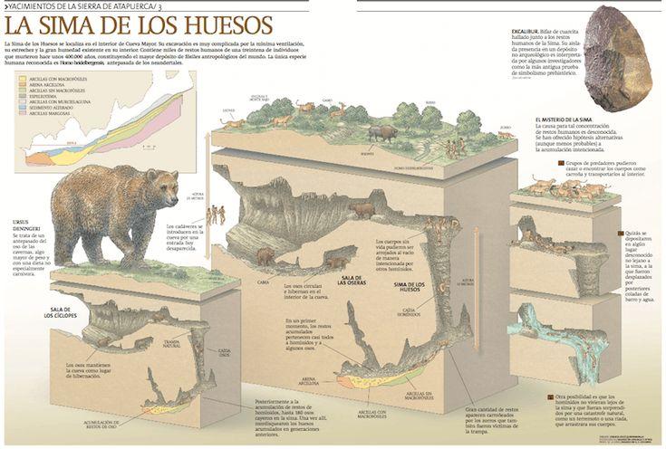 Las mejores infografías sobre Atapuerca | Rincón didáctico de Ciencias Sociales