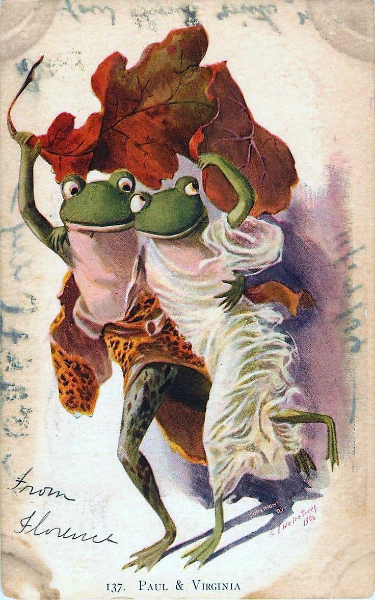 Жаба открытки