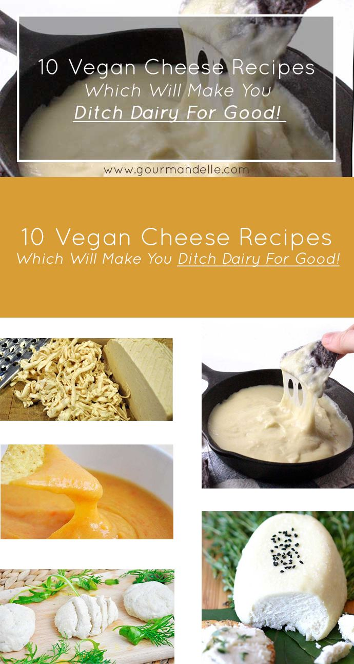 Here are some amazing vegan cheese recipes that will totally satiate your taste buds and you won't even believe that they are vegan once you've tasted them! http://gourmandelle.com/vegan-cheese-recipes/
