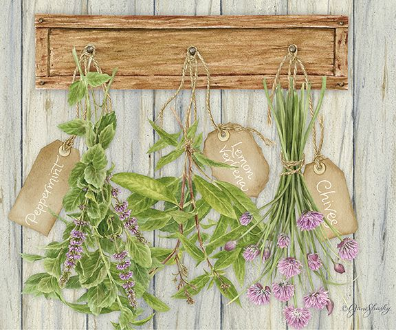 JS-HG456 hanging herbs