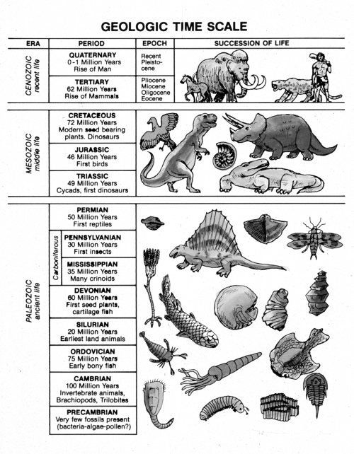 geologic time scale worksheet Termolak – Geologic Time Worksheet
