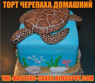 Повелитель тортов: торт черепаха домашний