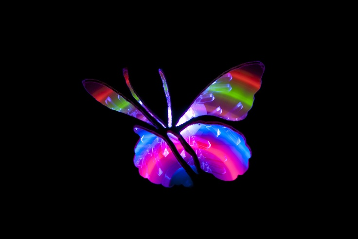 Light Painted Butterfly