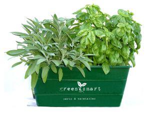 Green Smart Pots > GreenSmart > A Smarter Alternative