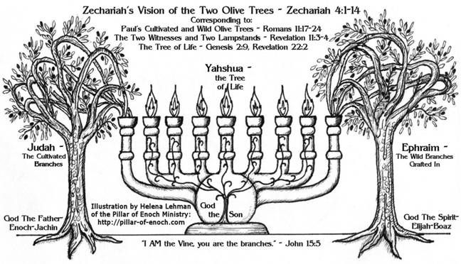 7 Branch Menorah Meaning | Zechariah's Vision Of The Menorah as a Symbol of Israel :