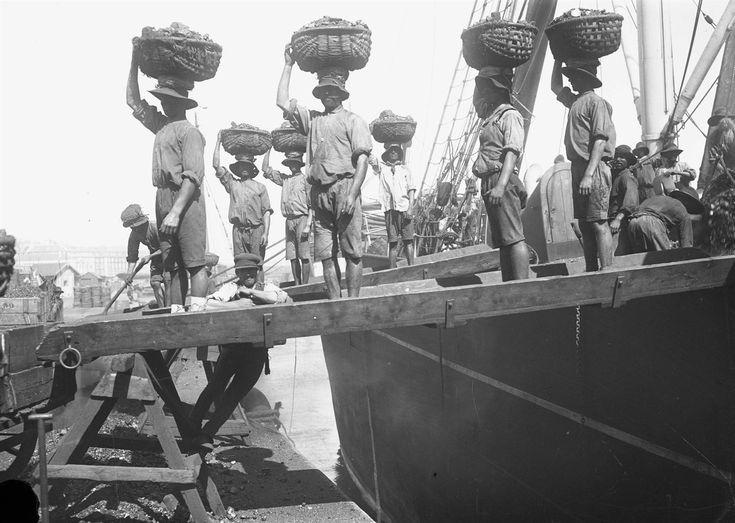 Descarga de carvão no Cais do Sodré, 1907