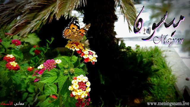 معنى اسم ميسون وصفات حاملة هذا الاسم Maysson Halloween Wreath Home Decor Wreaths