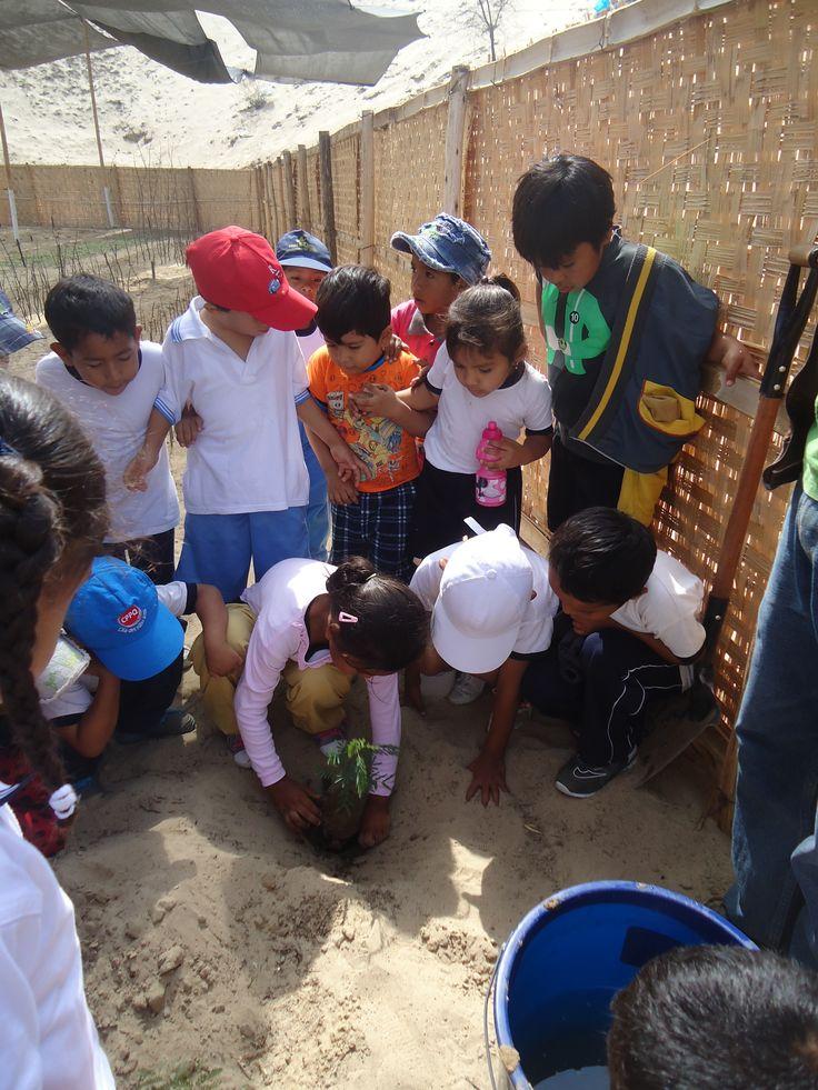 Todos los niños al cuidado de la naturaleza