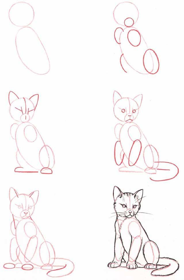 Learn to draw: Cat (sitting)