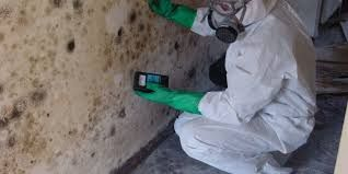 Our mold inspection Miami Specialist uses state of the art technology like thermal imaging cameras and moisture meters to find the best spots to test. Our inspectors then collect air/surface samples to determine what species of mold are present in your air. This is the only precise way to determine what is going on with your indoor air quality.   More Details: http://miamimoldspecialist.com
