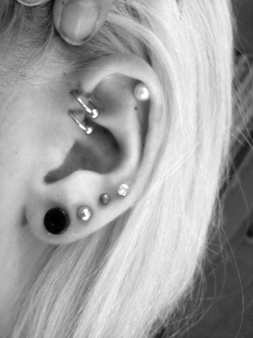 I feel like my ears are gonna look like this at some point lol. :)