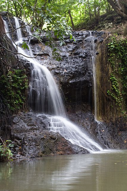 waterfalls st lucia | latille waterfall - St Lucia | Flickr - Photo Sharing!