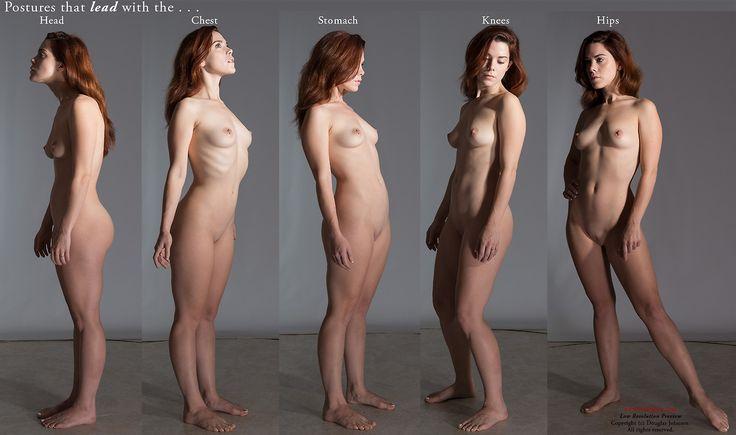 Female Anatomy Nude