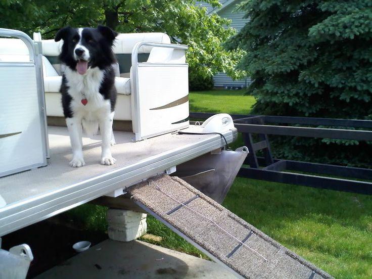 How To Make A Dog Ramp Dog Boat Ramp Dog Ramp Dogs On