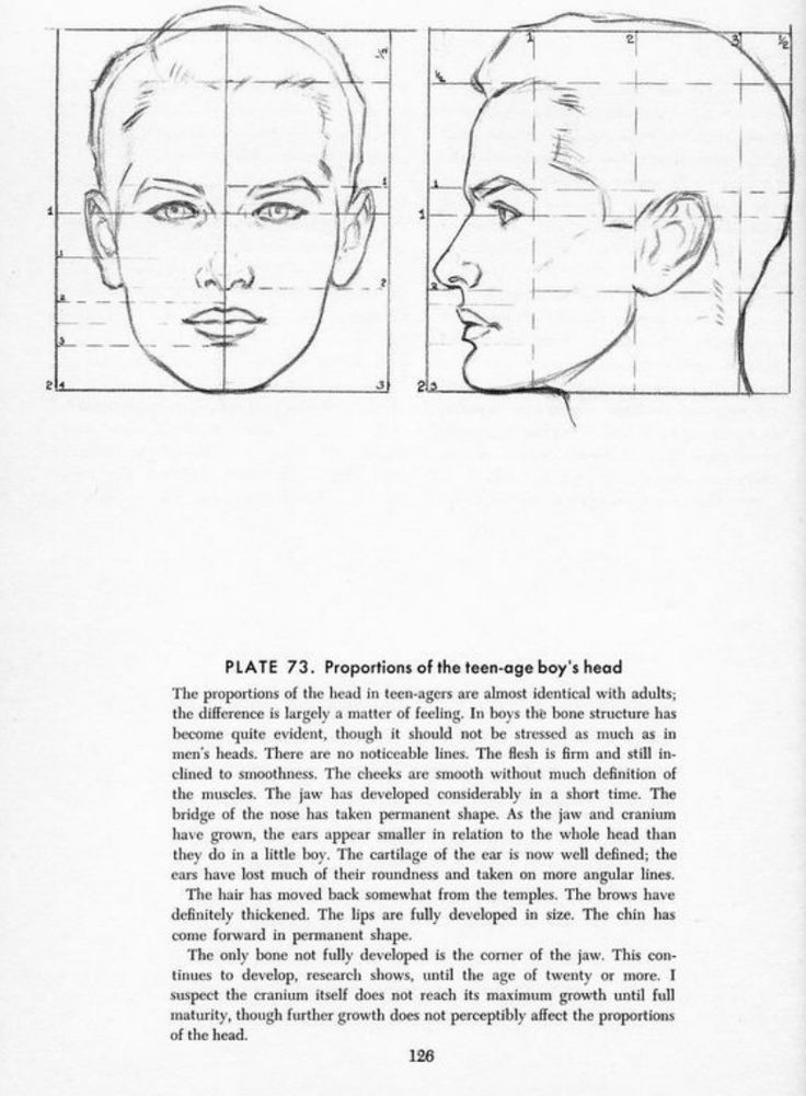 Drawing The Head And Hands Andrew Loomis Academic Drawing