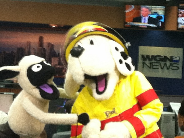 Sparky visited WGN News in Chicago!