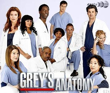Grey's anatomy - tv show - grey - doctors - hospital - lol -