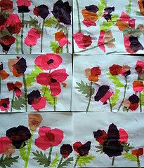 love the colours in these tissue poppy pictures! Use newspaper as background?