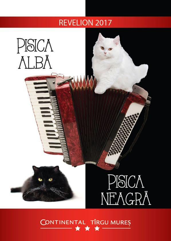 Hotel Continental Tîrgu Mureș ți-a pregătit pentru seara de Revelion 2017 o tematică inedită: Pisica Albă, Pisica Neagră.