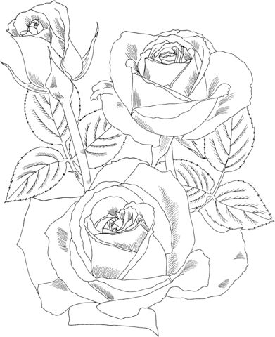 rose art coloring pages - photo#10