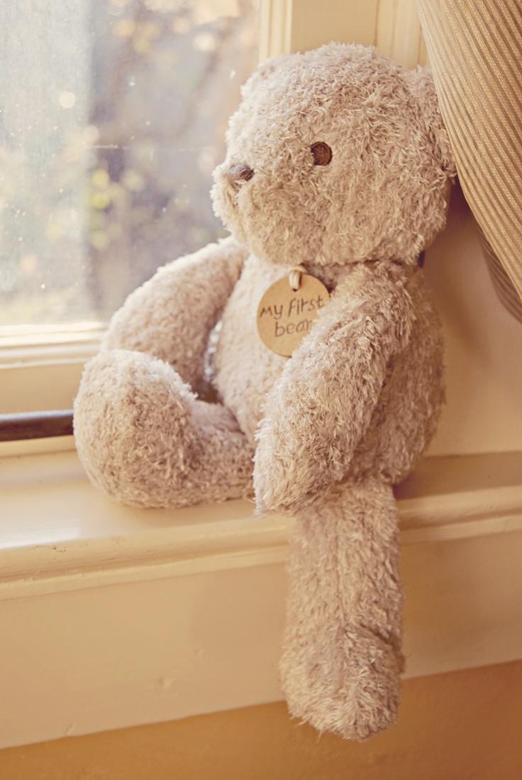 Windsor Photography   www.windsorphoto.com  Teddy Bear/ Baby/ Toys/ Maternity