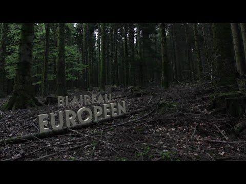 Le Blaireau européen #MNHN #biodiversité #Eurovia