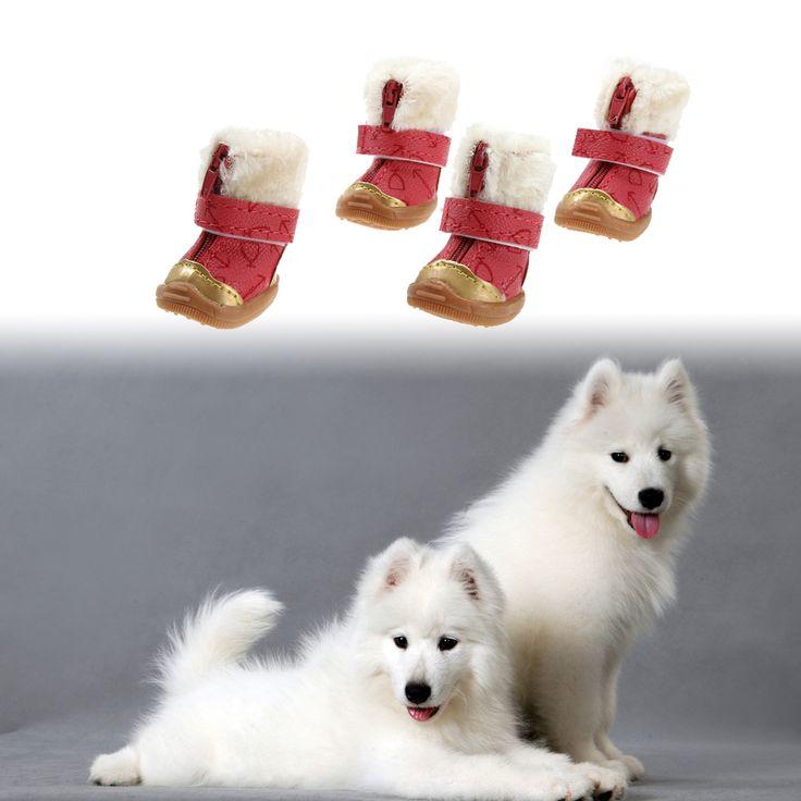 2 Pairs XS/S/M/L/XL Warm Pet Dog Waterproof Shoes Winter Snow Boots PU leather and Cotton Anti Slip Shoes for Small Pet Rose Red // FREE Shipping //     Get it here ---> https://thepetscastle.com/2-pairs-xssmlxl-warm-pet-dog-waterproof-shoes-winter-snow-boots-pu-leather-and-cotton-anti-slip-shoes-for-small-pet-rose-red/    #cat #cats #kitten #kitty #kittens #animal #animals #ilovemycat #catoftheday #lovecats #furry  #sleeping #lovekittens #adorable #catlover